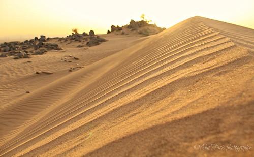 canon sand desert dune 600d صحراء تل رمال بحرة كثيب