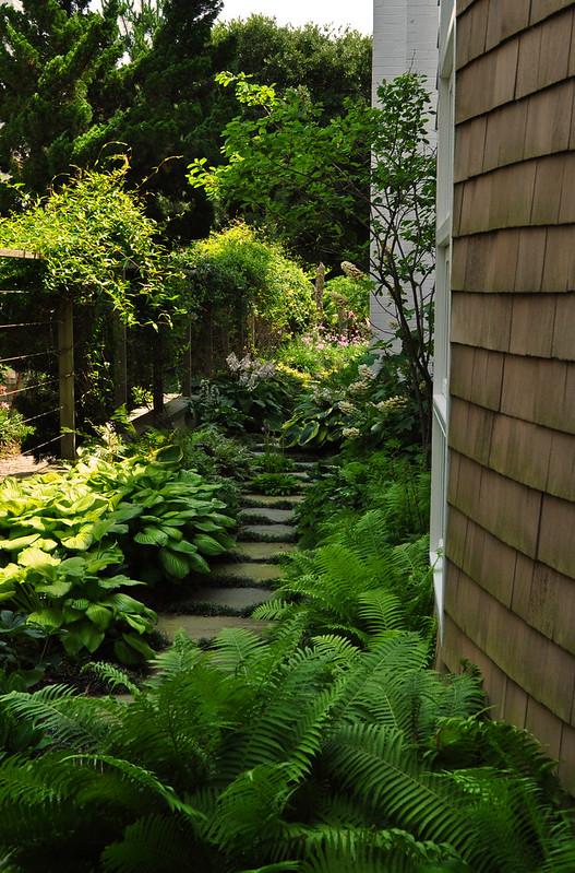 Goodman Garden (17)