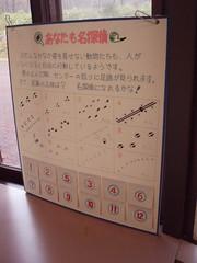 知床自然中心內的活動布置-介紹在地生物足印