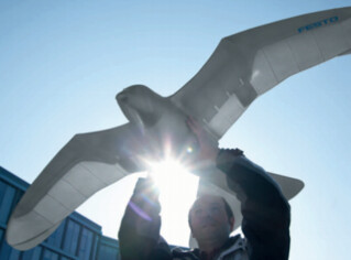 The Festo SmarBird Robot weighs less than half a kilogram and flaps it's wings like a bird