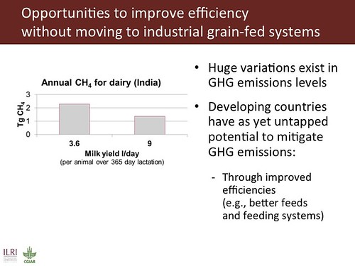 Slide 21: Opportunities to improve livestock efficiencies