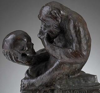 Darwin Monkey (ダーウィン・モンキー)