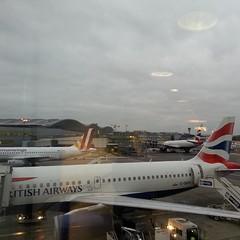 Beginning the labyrinthine journey through #Heathrow this morning. #lhr #London #britishairways