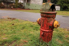 art(0.0), chainsaw carving(0.0), sculpture(0.0), statue(0.0), fire hydrant(1.0),