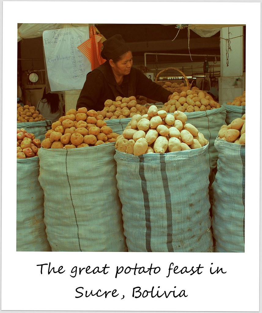 polaroid bolivia sucre potatoes