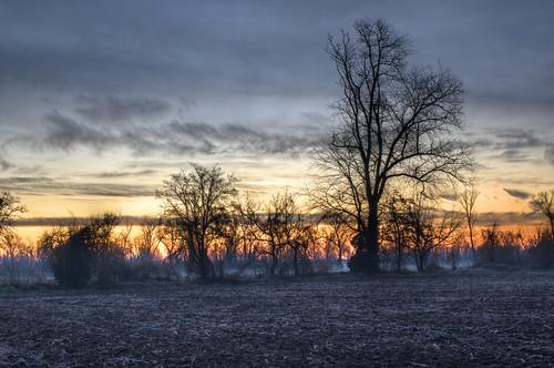 fog sunrise landscape dawn haze day cloudy hdr luminance farmstead qtpfsgui mantiuk06 pwwinter retenate
