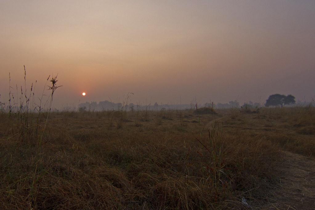 morning_landscape