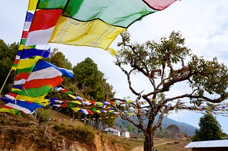 Prayer-Flags at a Monestary in Nepal