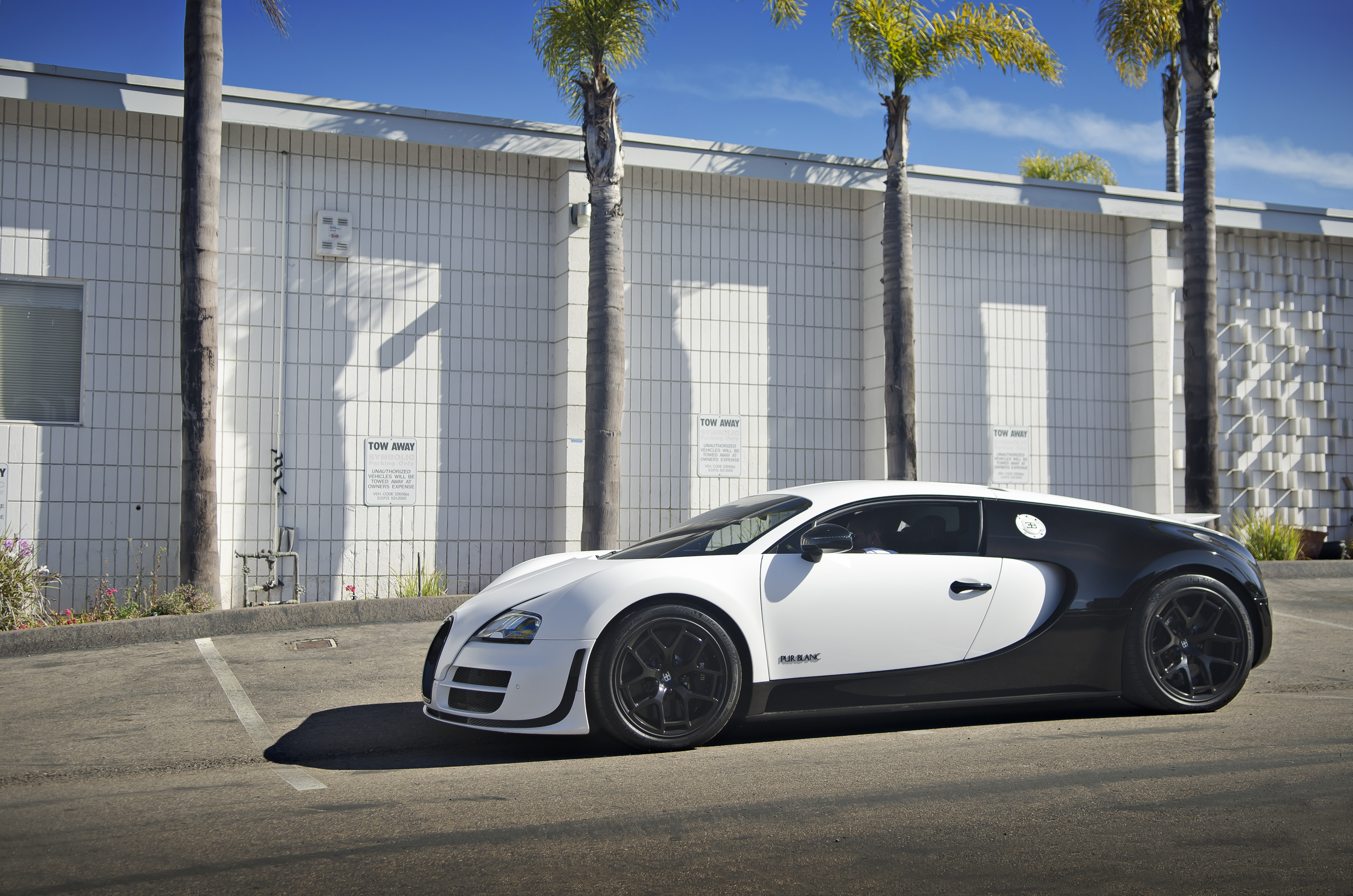 bugatti veyron pur blanc flickr photo sharing. Black Bedroom Furniture Sets. Home Design Ideas