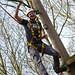 High Ropes at Kirkley Hall Campus
