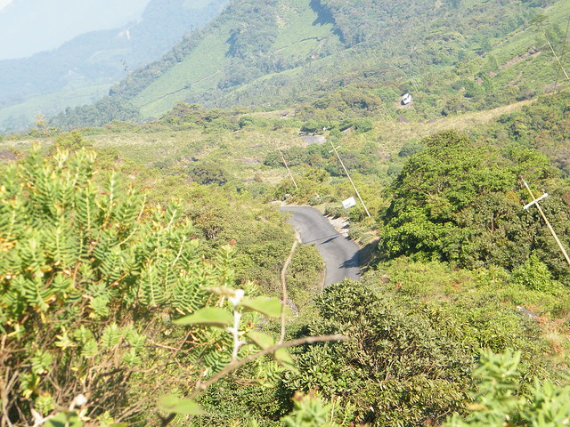 a road as seen from Eravikulam Nationa Park, Munnar