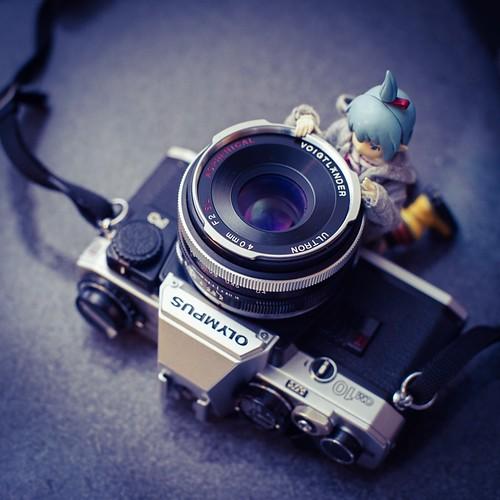 カメラロール-5979