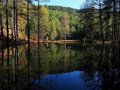trees mountain lake water colors forest hellas greece epirus greveniti