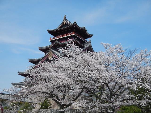 伏見桃山城②