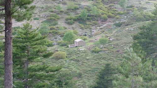 En vue de la bergerie de Galghello