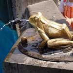 Żabka przy Flisaku w Toruniu
