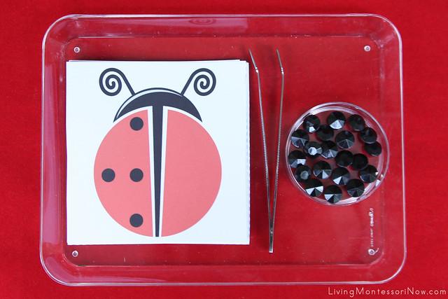 Ladybug Symmetry Tray