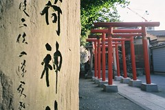 art, wall, road, shrine, torii,
