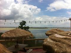 Across Mobile Bay