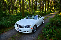 Chrysler Crossfire Roadster, in the woods