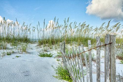 world sea summer vacation seascape art beach nature colors beauty clouds photoshop canon fence painting landscape island flora key raw day gulf florida cloudy july wideangle tropical tiff hdr pensacola perdido topaz photoshopelements gulfislandsnationalseashore perdidokey photomatix lostkey canonefs1755mmf28usm garyoliver rebelxsi canonxsi topazadjust grandalloliver grandalloliverphoto
