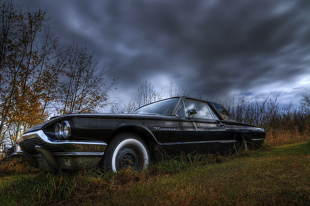 Thunderbird and Storm Clouds