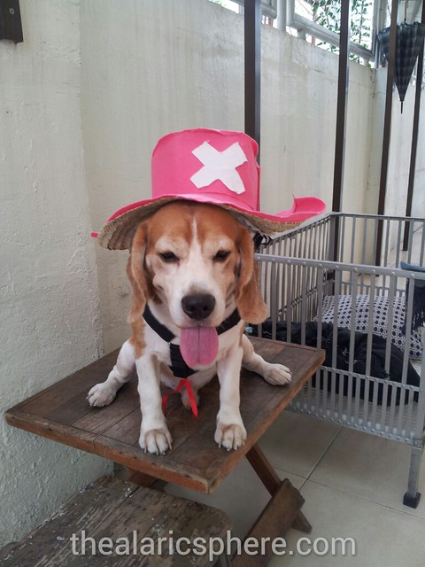 Dog-Beagle-Costume-Tony-Chopper-One-Piece-1