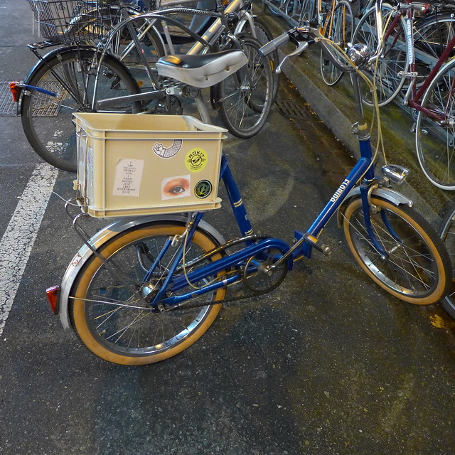I had a foldable bicycle just like this ...in orange
