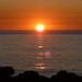 Sun, 09/10/2011 - 19:59 - Alumnos Colexio Alborada