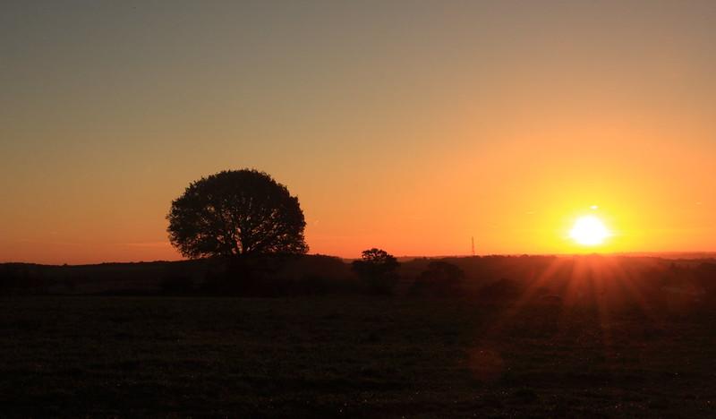 sunrise26