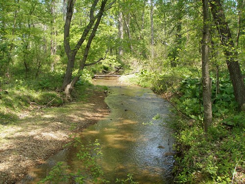 Image of Little Seneca Creek