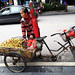 Selling Fresh Dates at Street of Guilin by Poon Tse Wan