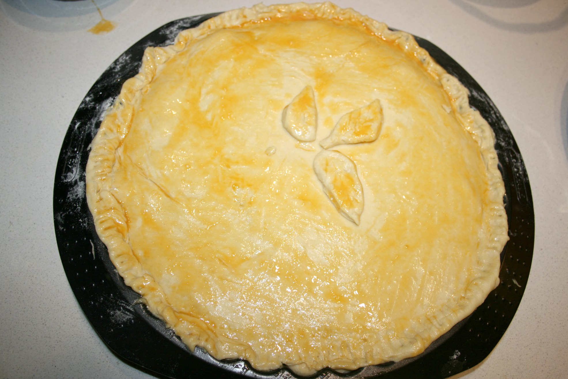 chicken pie1
