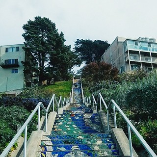 The city last week. The beautiful mosaic stairs leading to the Grandview Park, one of my favorite places! ☁ #sf #sanfrancisco #stairs #stairway #mosaic #grandviewpark #turtlehill #trees #plants #dunes #garden #sky #buildings #architecture #light #shadow #