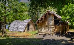 Houses of Tanna Island, Vanuatu