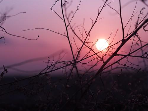 china winter sunset red cold prime olympus 45mm jilin em5 jilinchinasunset