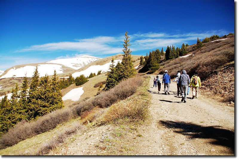 Hoosier Pass Loop Trail 4