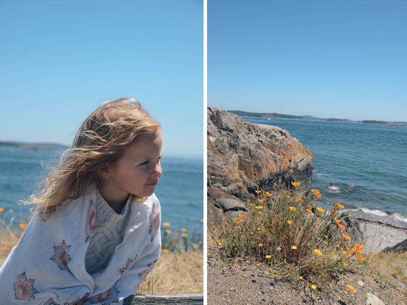 jess ocean