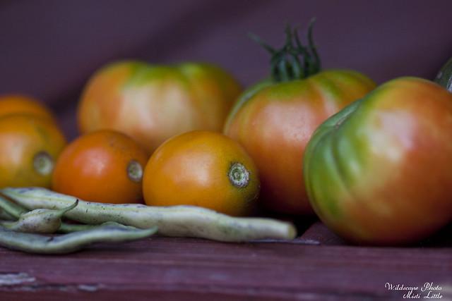 tomatoes2