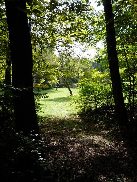 弗萊明自然保護區,圖片來自Flanders Nature Center & Land Trust 官方網站© Michael Amodeo