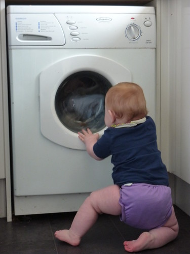 Who needs television when you can watch the washing machine?