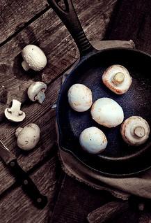 muhrooms.1