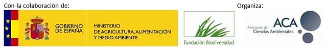 Proyecto Rio Henares 2013