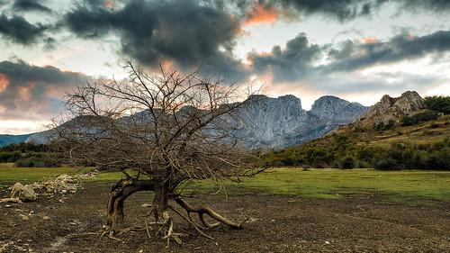 autumn trees sunset españa fall landscape spain árboles europa europe paisaje reservoir otoño león anochecer embalse castillayleón boñar porma castileandleón laforqueta