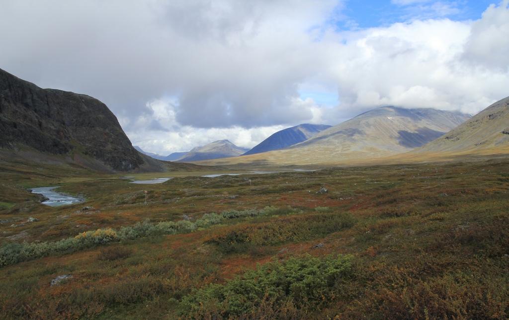 9. Paisaje de tundra cerca de Salka. Laponia sueca. Autor, Mleczko