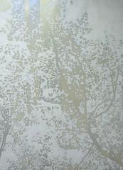 Chinaberry Sunset 2, 48 x 34