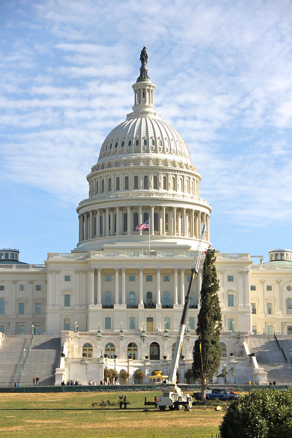 The Capitol Christmas Tree being assembled in 2013