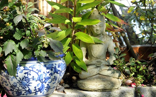 Buddha meditating under leaves, work never ends kids so meditate no matter what happens, blue and white planter, fushia, snall shell, mirror, bamboo fence, A Garden for the Buddha, Seattle, Washington, USA by Wonderlane