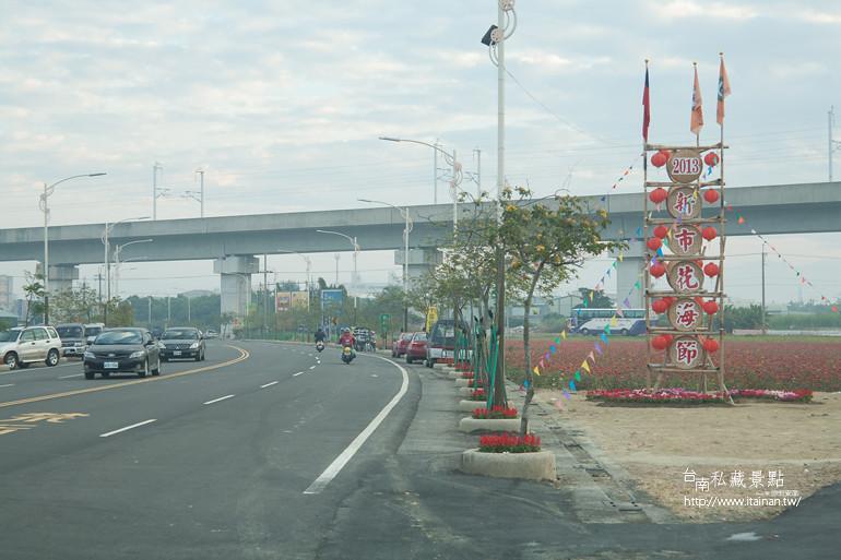 台南私藏景點-新市花海 (2)