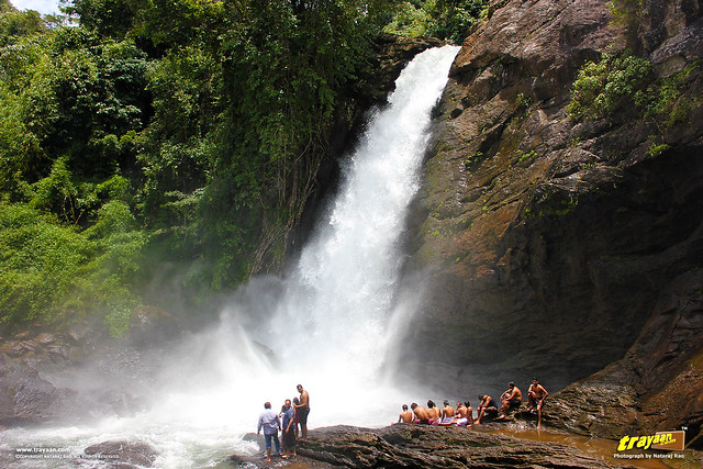 Soochipara Waterfalls, also known as Soochipura Waterfalls, Vellarimala, Wayanad, Kerala, India